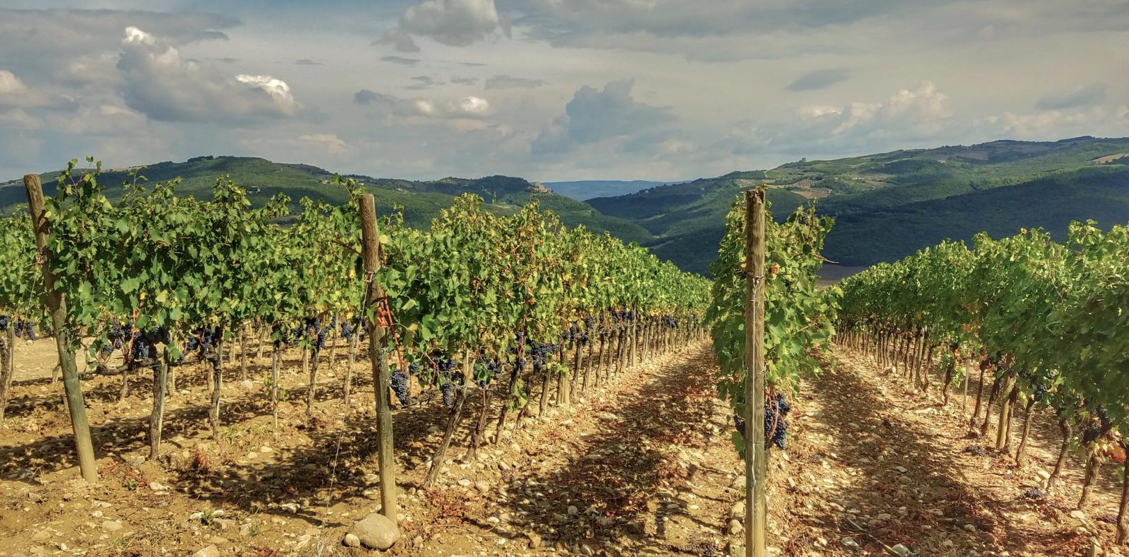 Discover-Destination-Tuscany-15 Italy